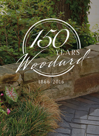 A Year to Remember: Woodard Celebrates 150-years of Craftsmanship
